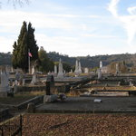 Jackson Cemetery - a newer section