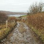 Road to Clifden Castle