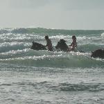 Une baignade avec les chevaux