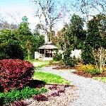 Gardens 1 (30083434)