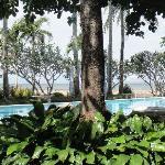 Palmas del Mar Conference Resort Hotel Foto