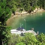 Tawa Cove