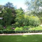 Garten mit Rasen
