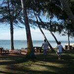 Polhena Reef Garden