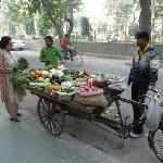 Fresh vegetables for dinner at Saubhag