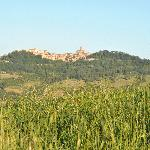 View on Todi