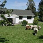 Photo de Broekhaven Country Cottage