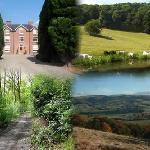Moors Farm Bed and Breakfast Welshpool
