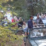Rush of Tourists