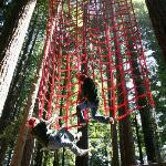 Ropes Course, also called Challenge Course or Adventure Park