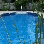 Woodridge B&B Pool