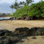 Beach in front of condo