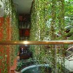 Atrium view...