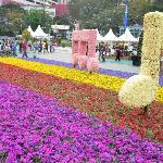 HK Flower 8