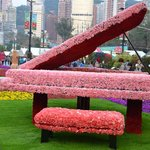 HK Flower 9