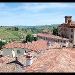 vista panoramica sul castello e le vigne intorno