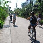 The freedom of biking
