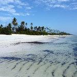 Matemwe: spiaggia