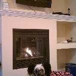 My dog enjoying the bed and fireplace
