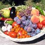 Seasonal fresh organic produce.