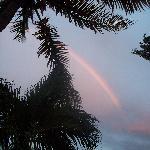 Foto de Tropical Breeze Hideaway