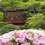 Photo de Sorakuen Garden