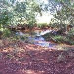 The babbling brook at Coober Pedy