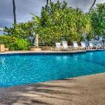 Terrific Pool