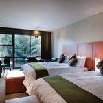 Te Waonui Forest Retreat Twin Room