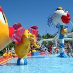 piscine aquatique