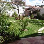 Garden with all kind of plants and herbs/Jardin con variedad de plantas en hierbas
