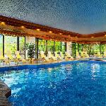 Pool im The Westin Bellevue Dresden