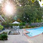 Seasonally heated garden pool area.