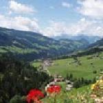 summer in alpbach