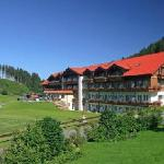 Photo de Haubers Alpenresort Hotel