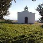 Masseria Gelso Antico Ristorante- Ricevimenti Meetings Foto