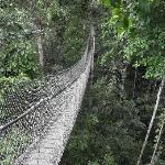 reserva amazonica
