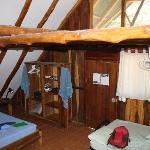 Tretop suite