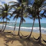 Vista de las hamacas y de la playa del restaurante