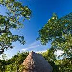 Kisampa bungalow