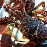 Fresh Delicious Jumbo Crab
