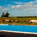 Ecotourism & Vineyards