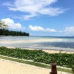 Kalinaun Resort - Lembeh & Bangka照片