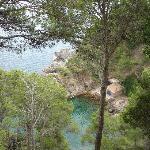 Foto de Jardín Botánico de Cap Roig (Jardí Botànic de Cap Roig)