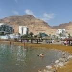 A une vingtaine de km de l'hôtel la Mer Morte