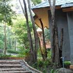 Garden Villa walk