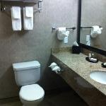 nice bathroom except for the hair
