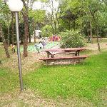The picnic/playground area in front of the office.