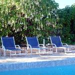 piscine chauffée au milieu d'un jardin