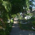 the hotel gardens